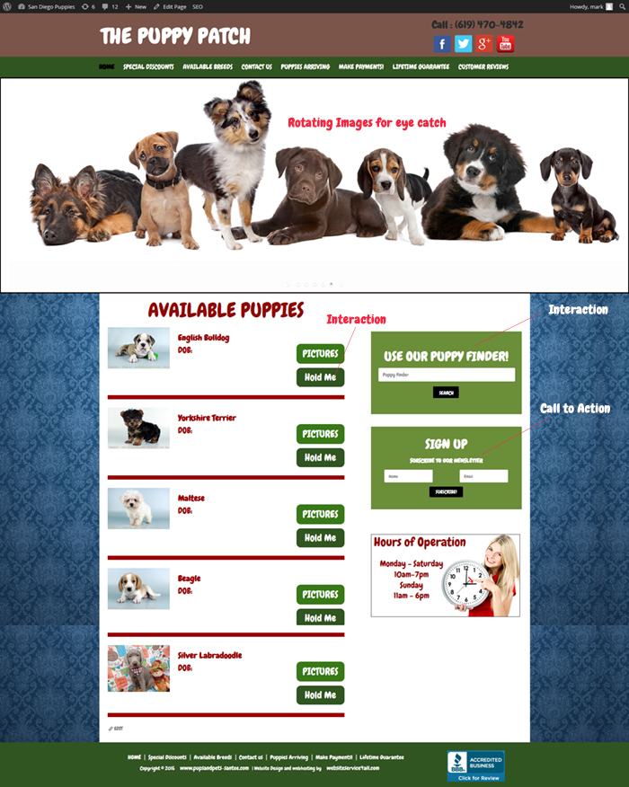 Pet Store Websites