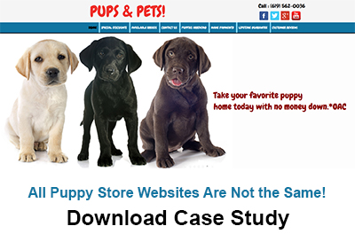 websites for puppy stores