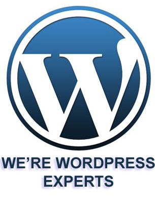 WE'RE WORDPRESS EXPERTS!